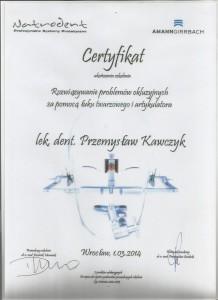 certyfikat (19)